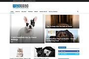 Create any kind of website by wordpress with blog 10 - kwork.com