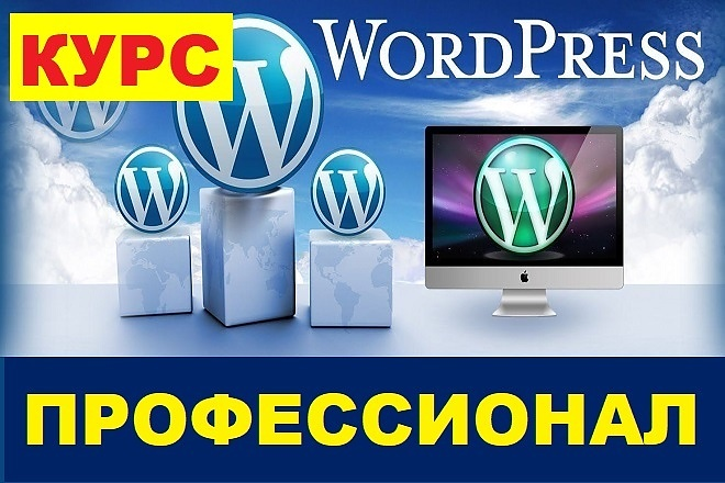 Курс - WordPress для профессионалов + Бонус